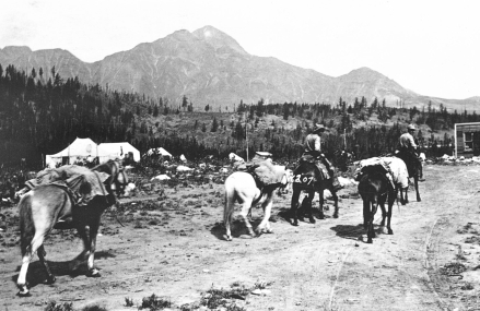 Forest rangers (also known as game guardians before they were given the title park wardens) leaving Fitzhugh (renamed Jasper in 1913), 1911.