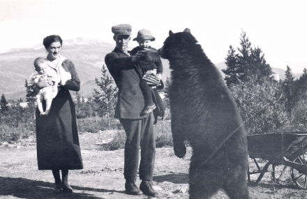 Feeding bears was a popular, but dangerous pastime in Jasper during the early years of park establishment, ca. 1920.