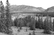 The lower Athabasca River Valley near Devona on the banks of the Snake Indian River. Archaeological studies in the area have unearthed 9000 year-old Aboriginal camps.